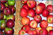 Tulmeadow Seasonal Apples